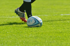 Rugby ball on the grass Royalty Free Stock Photos