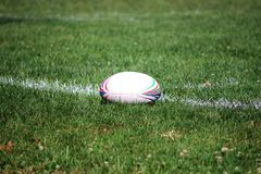 Rugby ball on field. Rugby ball on the green field royalty free stock images