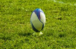 Rugby ball at green grass. royalty free stock photography