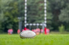 Rugby ball at green grass. Photo taken at rugby match. stock image