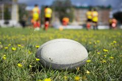 Rugby ball at green grass. Photo taken at rugby training royalty free stock images