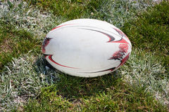 Rugby ball lying on the green grass. On line Stock Photos