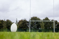 Rugby ball on the pitch Royalty Free Stock Images