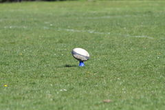 Rugby ball on a tee Royalty Free Stock Image