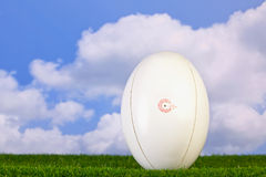 Rugby ball tee'd up on grass Royalty Free Stock Photos