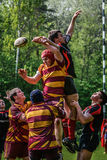 Rugby ball toss Stock Images