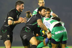 Rugby Celtic League; Benetton vs Connacht Royalty Free Stock Image