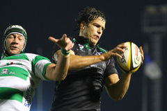 Rugby Celtic League; Benetton vs Connacht. Rugby Magners Celtic League 2010 Royalty Free Stock Image