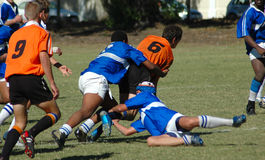 Rugby d'action Photo libre de droits