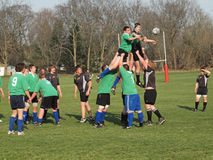 Rugby dans l'action Images stock