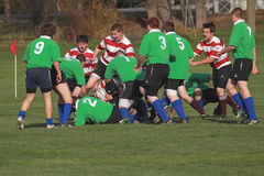 Rugby dans l'action Photos libres de droits