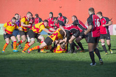 Rugby fighting spot royalty free stock photo