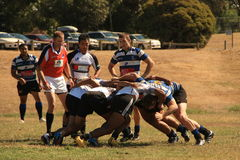 Rugby 7 football field Stock Image