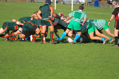 Rugby football - the scrum in action. Rugby national sport of New Zealand - the scrum where 2 team push each other off the ball Stock Photo