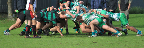 Rugby Football - the scrum. Rugby scrum - two teams push each other off the ball Royalty Free Stock Photo