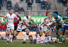 RUGBY GUINNESS PRO 12, BENETTON VS ULSTER - PIENAAR. RUGBY GUINNESS PRO 12 CHAMPIONSHIP, 2014-2015 - BENETTON (ITA) vs ULSTER, 20-24 Royalty Free Stock Photos