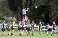 Rugby i Nya Zeeland Royaltyfri Bild