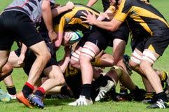 Rugby i Nya Zeeland Royaltyfri Foto