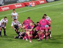Rugby Jano Vermaak Sudafrica 2012 Immagine Stock Libera da Diritti