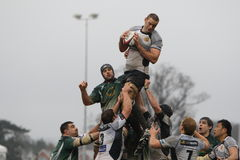 Rugby line out Royalty Free Stock Photos