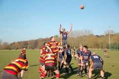 Rugby Line-Out Royalty Free Stock Photo