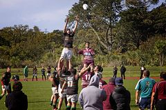 Rugby Line-out Catch Royalty Free Stock Image