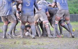 Rugby match. Royalty Free Stock Photos