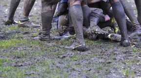Rugby match. Stock Image