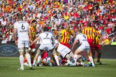 Rugby match USAP vs Toulon Stock Images