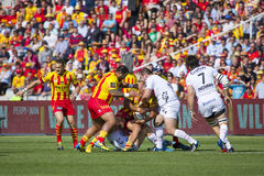 Rugby match USAP vs Toulon Royalty Free Stock Photography