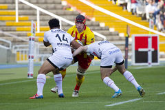 Rugby match USAP vs Toulon Stock Photos