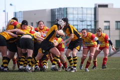 Rugby match USAT (France) v GETXO (Spai Royalty Free Stock Images