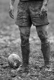Rugby Mud Bowl Royalty Free Stock Image