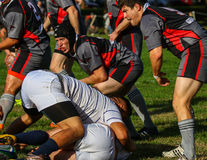 Rugby na queda Imagens de Stock Royalty Free