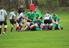 Rugby nell'azione Fotografia Stock Libera da Diritti