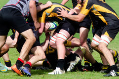 Rugby in New Zealand Royalty Free Stock Photo