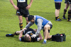 Rugby physiotherapy. LONDON - May 1: Injured London Wasps player received physiotherapy during the Semi Finals of the Amlin Challenge Cup V Cardiff Blues