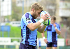 Rugby player concentration Royalty Free Stock Photography