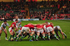 Rugby player doing scrum. During the wales and argentina rugby match in millennium stadium Stock Image
