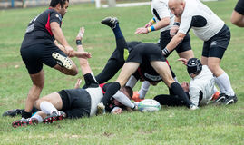 Rugby players in action Royalty Free Stock Image