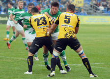 Rugby players fight for ball Royalty Free Stock Photo