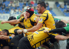 Rugby players fight for ball Royalty Free Stock Image