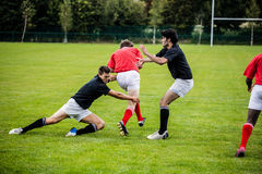 Rugby players playing a match Royalty Free Stock Images