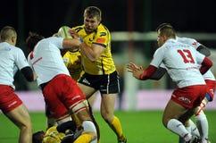 Rugby Pologne - Moldau amicaux Photographie stock libre de droits