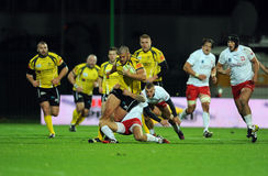 Rugby Pologne - Moldau amicaux Image stock