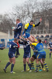Rugby Stockfotos
