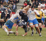 rugby scotland sex för erbitaly nationer vs Royaltyfria Foton