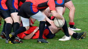Rugby scrum. Man down at rugby scrum Stock Photos
