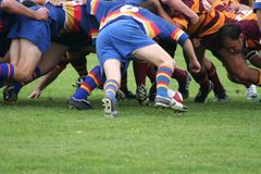 Rugby Scrum. Two opposing rugby teams pack down a scrum as the ball is put in Royalty Free Stock Photo
