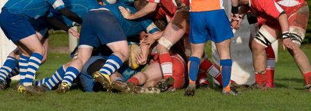 Rugby scrum in panoramic view. Rugby teams  scrum in panoramic view Royalty Free Stock Photos
